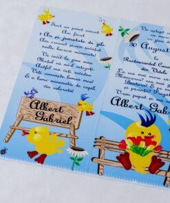 Invitatie-botez-Blue-Duck